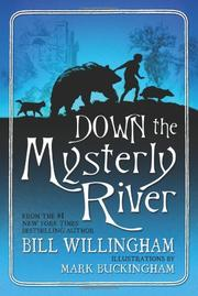 Book Cover for DOWN THE MYSTERLY RIVER
