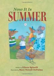 Book Cover for NOW IT IS SUMMER