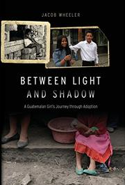 Book Cover for BETWEEN LIGHT AND SHADOW