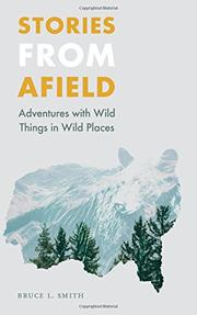STORIES FROM AFIELD by Bruce L. Smith