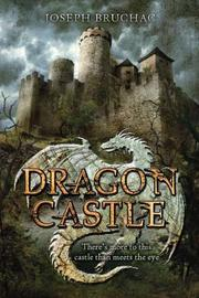 Book Cover for DRAGON CASTLE