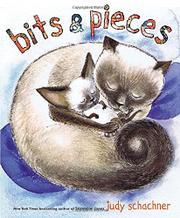 BITS & PIECES by Judy Schachner
