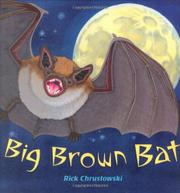 Cover art for BIG BROWN BAT