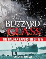 Book Cover for BLIZZARD OF GLASS