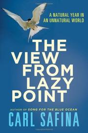 Book Cover for THE VIEW FROM LAZY POINT