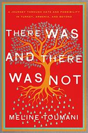 THERE WAS AND THERE WAS NOT by Meline Toumani
