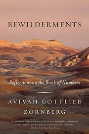 BEWILDERMENTS by Avivah Gottlieb Zornberg