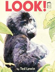 LOOK! by Ted Lewin