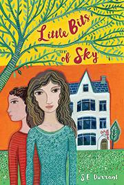 LITTLE BITS OF SKY by S.E. Durrant