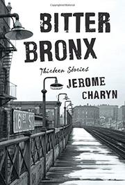 BITTER BRONX by Jerome Charyn