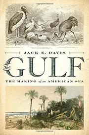 THE GULF by Jack E. Davis