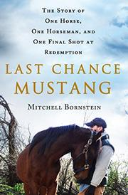 LAST CHANCE MUSTANG by Mitchell Bornstein