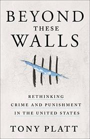 BEYOND THESE WALLS by Tony Platt