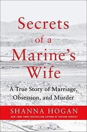 SECRETS OF A SOLDIER'S WIFE by Shanna Hogan