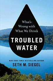 TROUBLED WATER by Seth M. Siegel