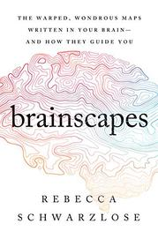 BRAINSCAPES by Rebecca Schwarzlose