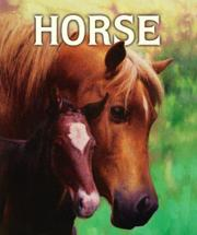 Cover art for HORSE