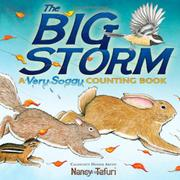 Book Cover for THE BIG STORM