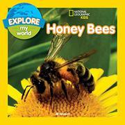 HONEY BEES by Jill Esbaum