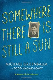 SOMEWHERE THERE IS STILL A SUN by Michael Gruenbaum