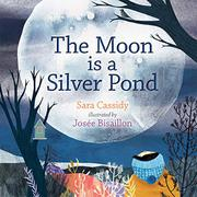 THE MOON IS A SILVER POND by Sara Cassidy