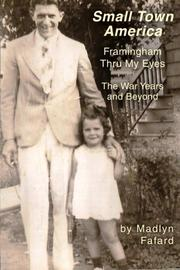 SMALL TOWN AMERICA FRAMINGHAM THRU MY EYES by Madlyn A. Fafard