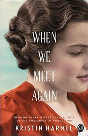 WHEN WE MEET AGAIN by Kristin Harmel