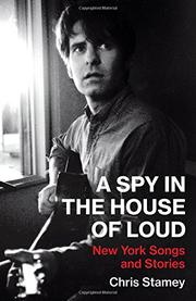 A SPY IN THE HOUSE OF LOUD by Chris Stamey