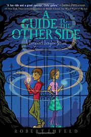A GUIDE TO THE OTHER SIDE by Robert Imfeld