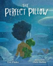 THE PERFECT PILLOW by Eric Pinder