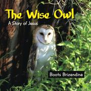 The Wise Owl by Boots Brizendine