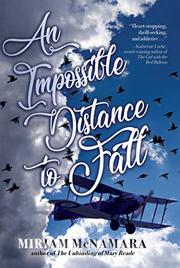 AN IMPOSSIBLE DISTANCE TO FALL by Miriam McNamara