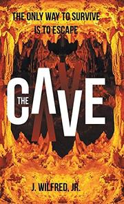 THE CAVE by J.  Wilfred