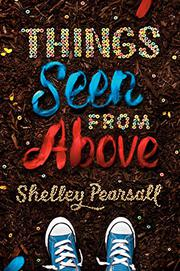 THINGS SEEN FROM ABOVE by Shelley Pearsall