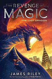 THE LAST DRAGON  by James Riley