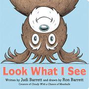 LOOK WHAT I SEE by Judi Barrett