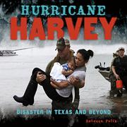 HURRICANE HARVEY by Rebecca Felix