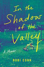 IN THE SHADOW OF THE VALLEY by Bobi Conn