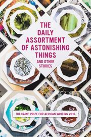 THE DAILY ASSORTMENT OF ASTONISHING THINGS AND OTHER STORIES by