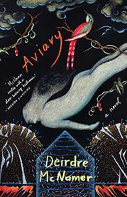 AVIARY by Deirdre McNamer