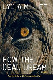 Cover art for HOW THE DEAD DREAM