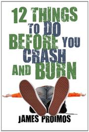 Book Cover for 12 THINGS TO DO BEFORE YOU CRASH AND BURN