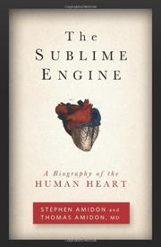 THE SUBLIME ENGINE by Stephen Amidon