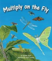 MULTIPLY ON THE FLY by Suzanne Slade