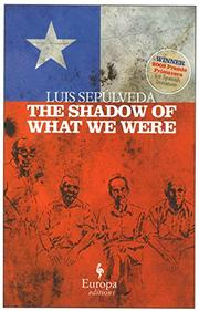 Book Cover for THE SHADOW OF WHAT WE WERE