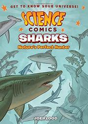 SHARKS by Joe Flood