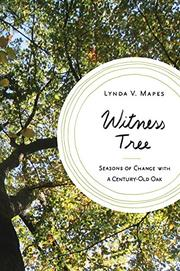 WITNESS TREE by Lynda V. Mapes