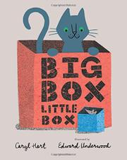 BIG BOX LITTLE BOX by Caryl Hart