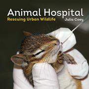 ANIMAL HOSPITAL by Julia Coey