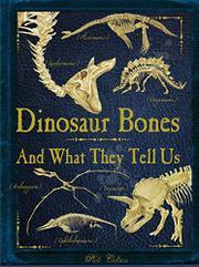 DINOSAUR BONES by Rob Colson